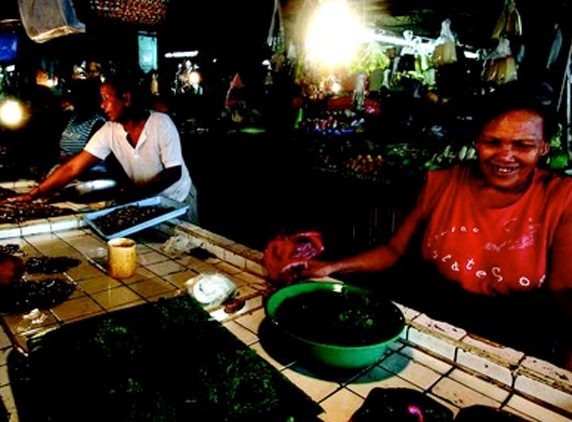 Philippines Rural Electrification